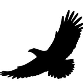 Nalepka Ptica